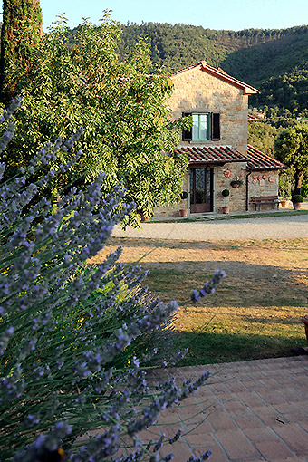 Rules, rates and services at country house in Tuscany with pool and Wi-Fi connection